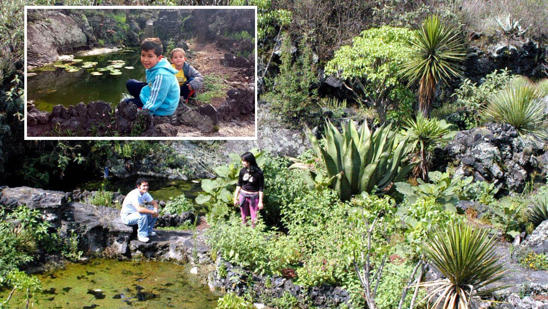 D a del ni o cinco grandes ideas para ir de aventura con for Peces para estanques al aire libre