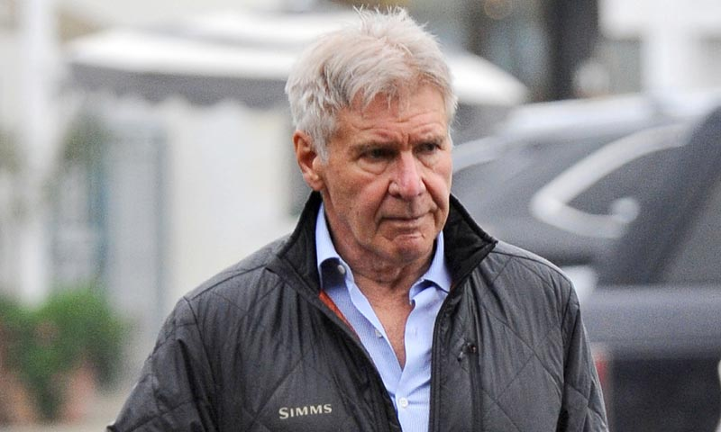 Harrison Ford Son