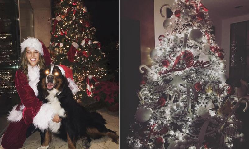 Los famosos presumen sus rboles de navidad foto 1 - Decoracion arbol navidad 2015 ...