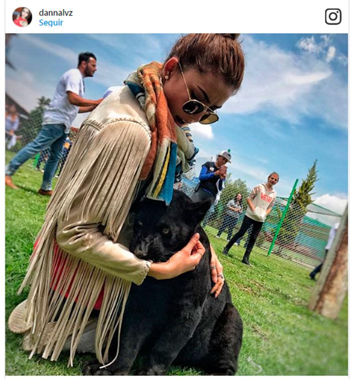 José Ron y su novia Daniela Álvarez disfrutan de una 'salvaje' aventura entre leones