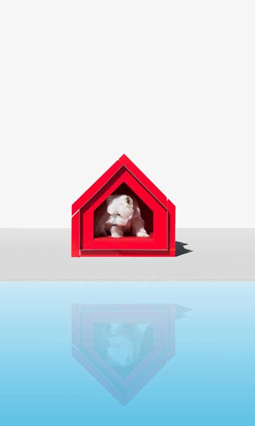 Tendencias 2019 12. Diseño para mascotas