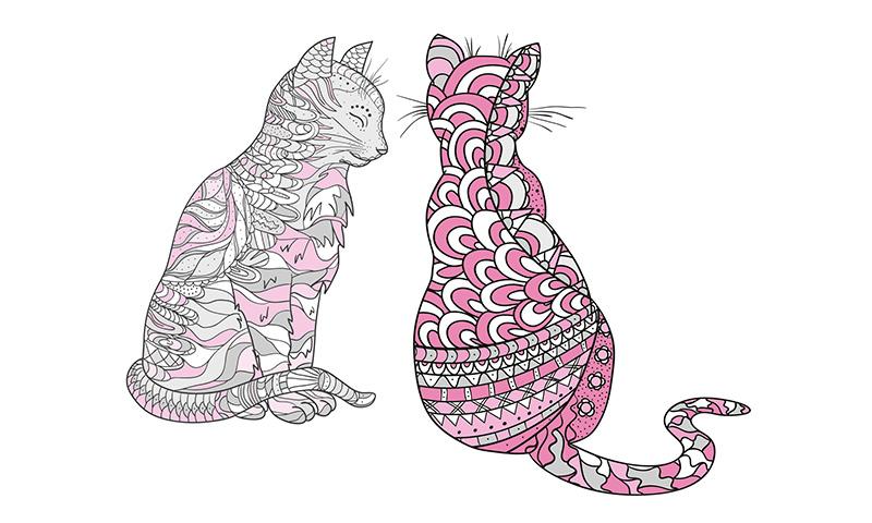 Te gustan los gatitos? Déjate atrapar por su magia con estos ...