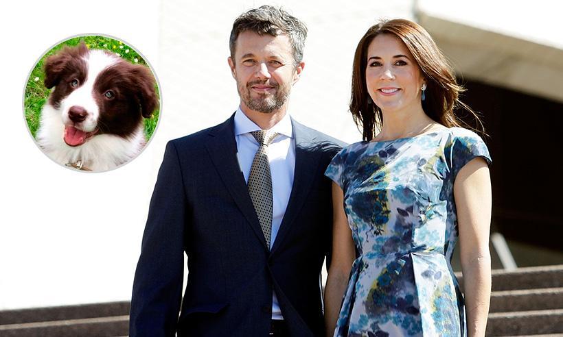 El nuevo – y adorable – integrante de la Familia Real de Dinamarca
