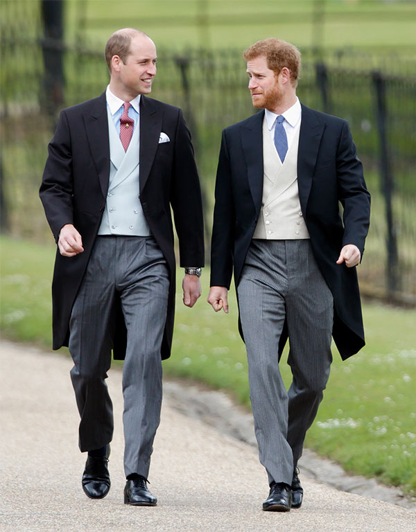 El Príncipe Harry y el Príncipe William