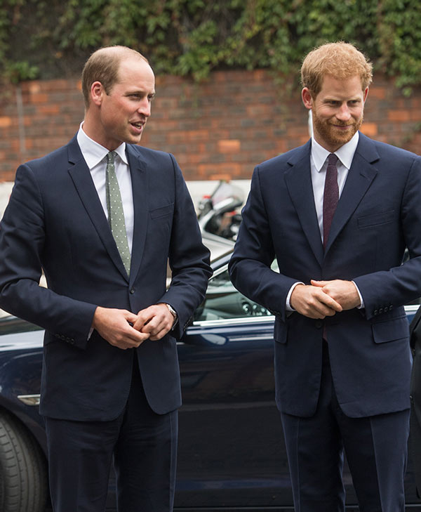 Harry y William
