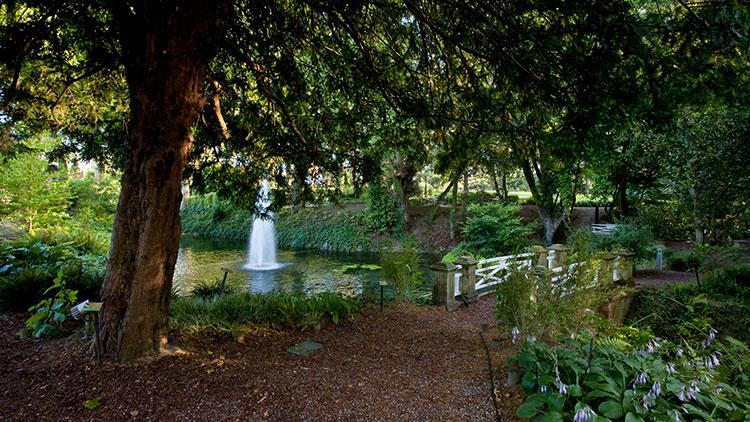 Siete lugares de gij n donde te puedes encontrar a lara for El jardin botanico gijon