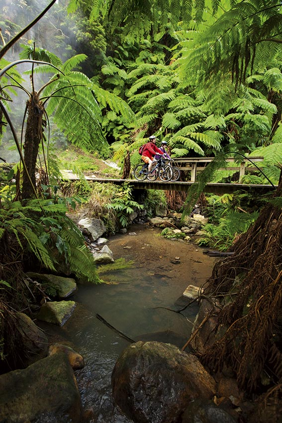 Mountain-Biking-azores-portugal