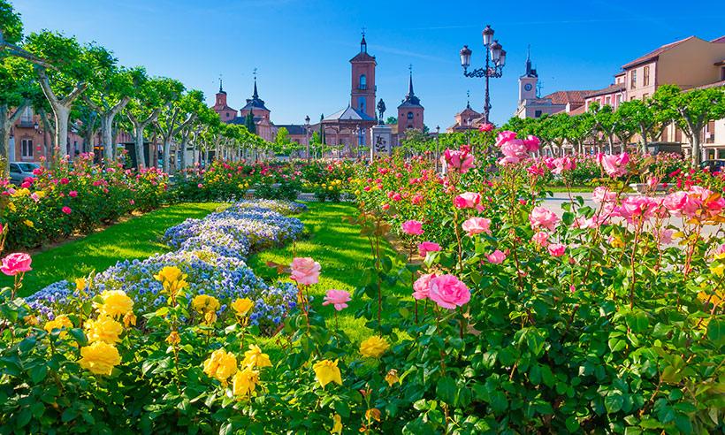 Ideas para un d a de primavera en alcal de henares for Tanatorio jardin alcala de henares